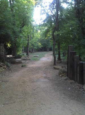 Lanana Creek Trail