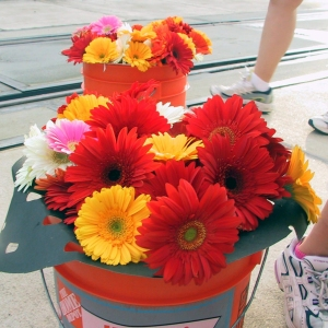 Photo of bucket of gerber daisies surrounded by runners feet.