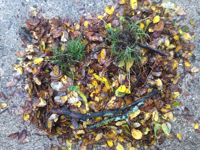 Photo of leaves swept into a pile with smiley face made out of twigs.