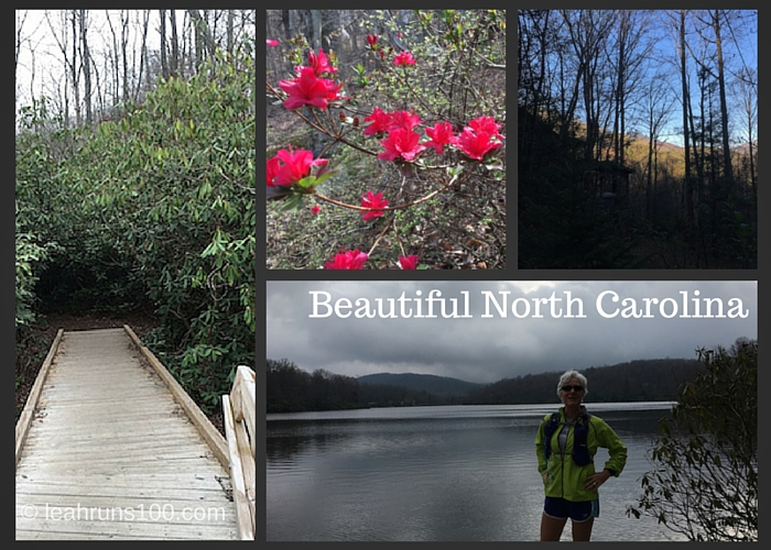 Collage of photos showing variety of natural beauty in North Carolina