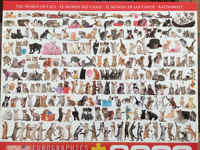 """Photo of 2,000 piece puzzle, """"The World of Cats"""""""