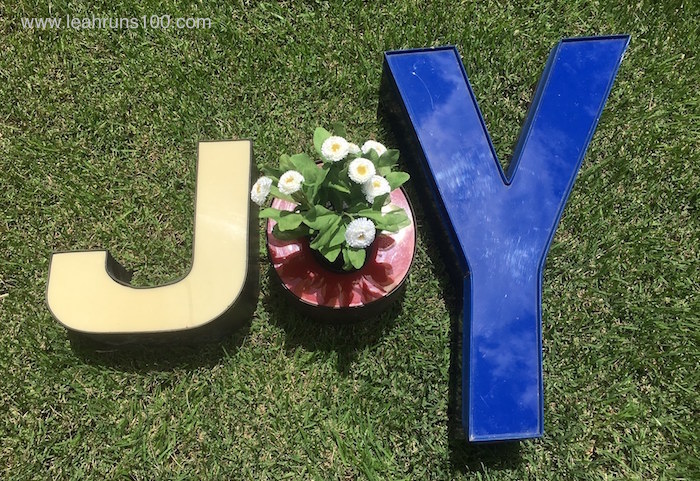 "Neon letters placed on grass that spell out ""JOY."""