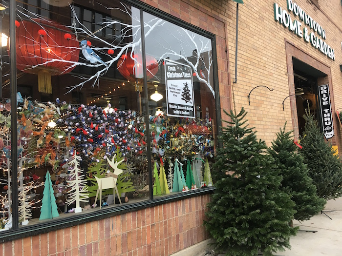 Facade and front window with holiday decorations at Ann Arbor's Downtown Home & Garden.
