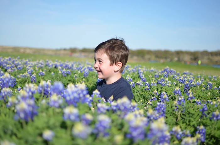 Boy sitting in bluebonnet field at Brushy Creek Lake Park
