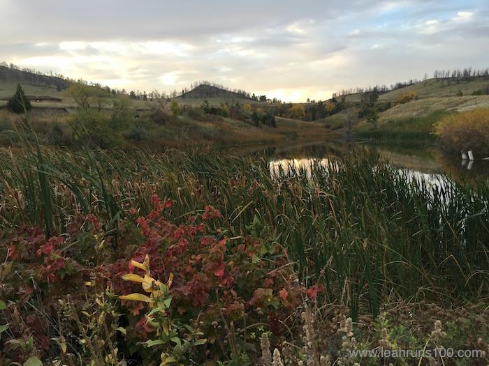 Grasses and pond near Hudson-Meng Bison Bonebed in Nebraska